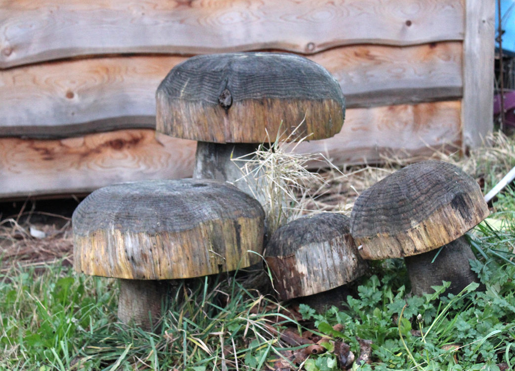 Wooden carvings closely resembling mushrooms