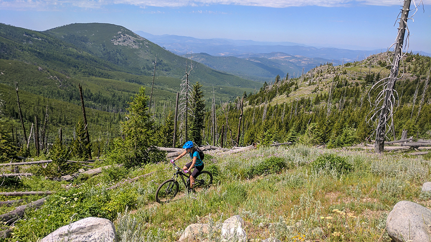 a cyclist navigating a trail on Galbraith Mountain