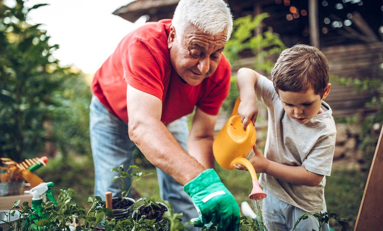 An older man shows his grandson how to garden.